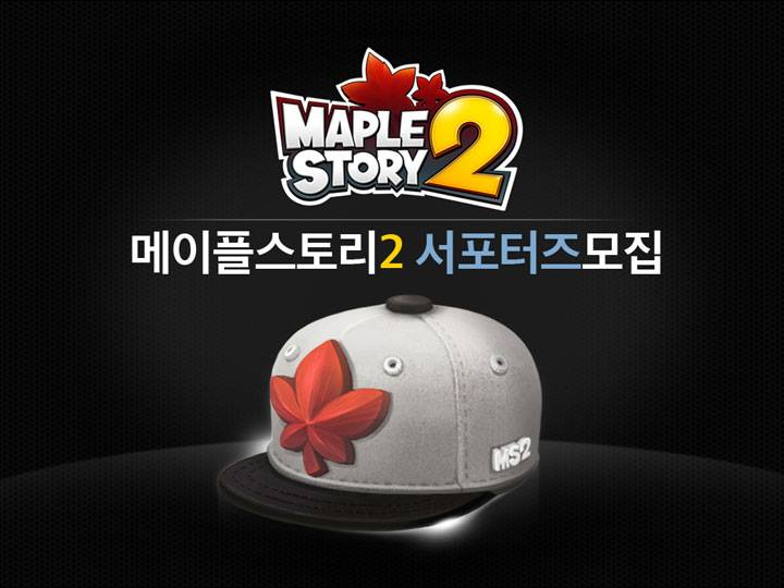 MapleSotry 2 volunteer program