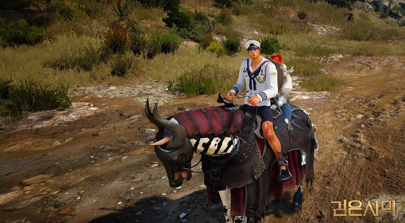 Black Desert - 2-player mount screenshot 2