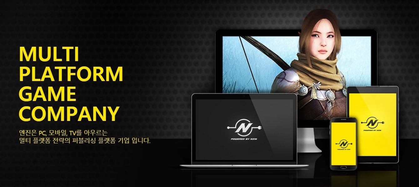Nzin Corporation image
