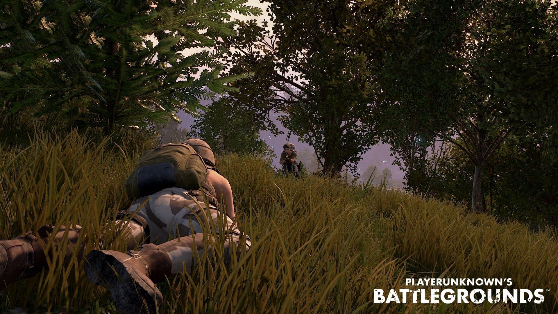 Playerunknown's Battlegrounds screenshot 1