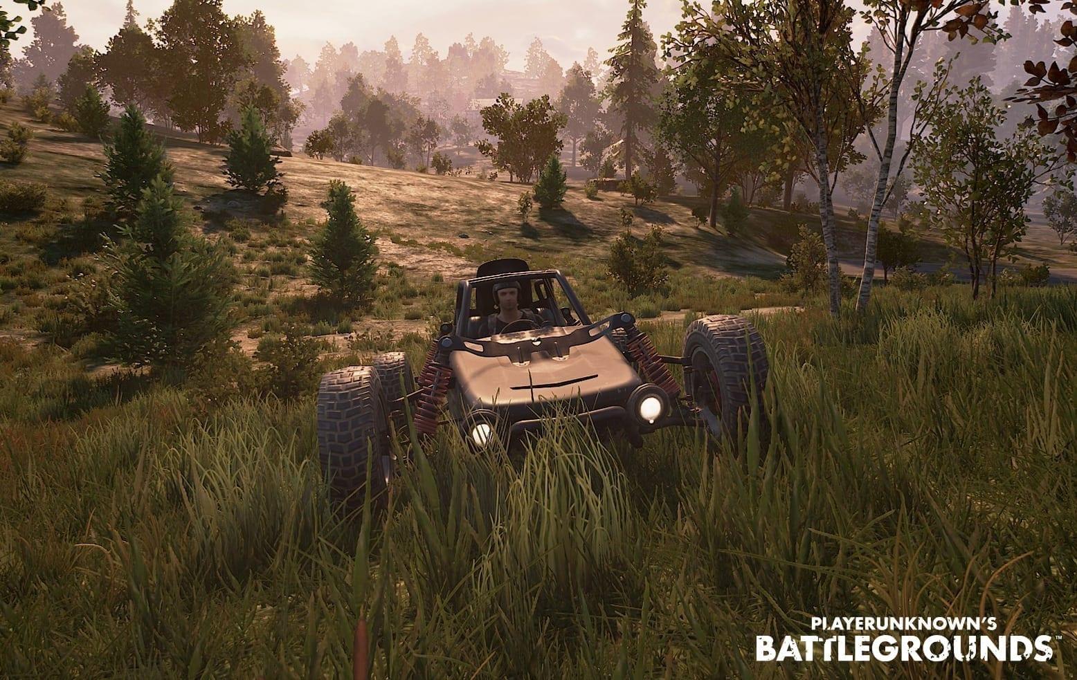 Playerunknown's Battlegrounds screenshot 2