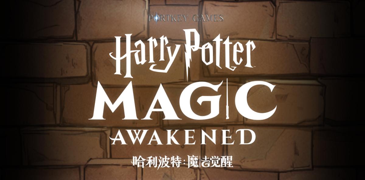 Harry Potter Magic Awakened